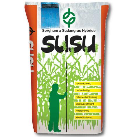 SUSU Sorghum x sorgho du Soudan hybride 15 kg sorgho du Soudan, culture dérobée, Biomasse, Biogaz