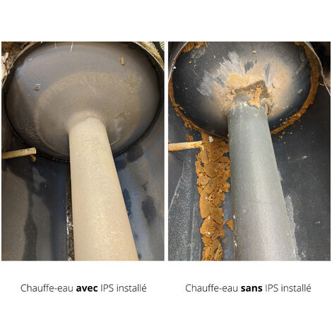 Swiss Aqua Technologies Réducteur de tartre IPS KalyxX BlueLine G 1 ' femelle (IPSKXBG1)