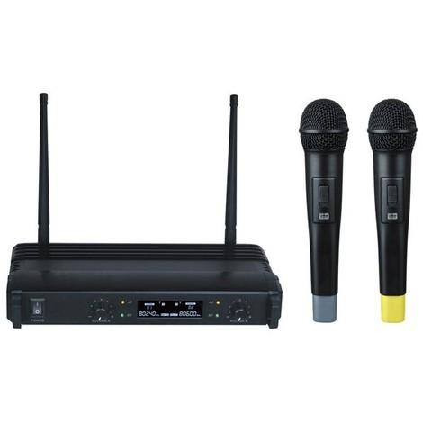 Système microphone sans fil à 2 canaux