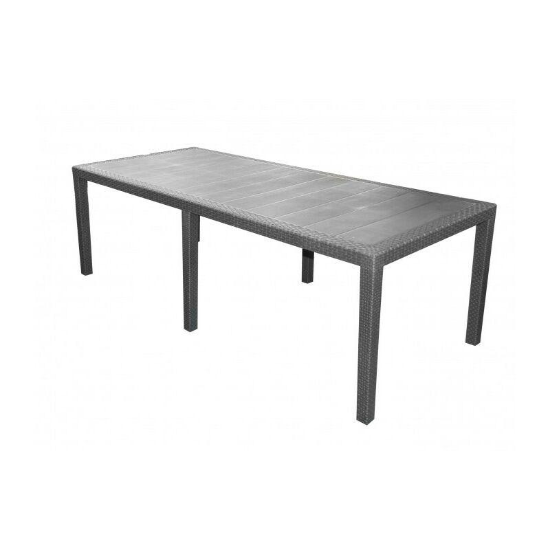 Table de Jardin MIAMI 8 à 10 personnes Rotin Gris Anthracite - 220cm