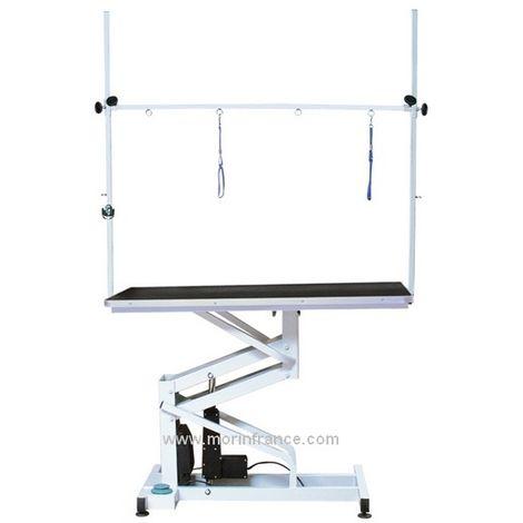 Table de toilettage électrique Désignation : Table électrique MORIN 2107