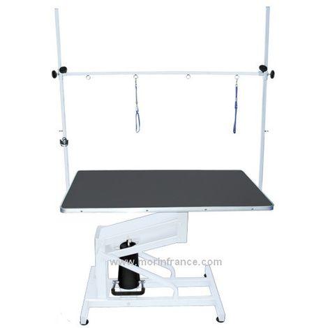 Table de toilettage hydraulique pour chien Désignation : Table hydraulique MORIN 2106