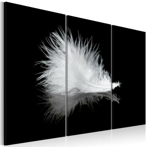 Tableau - Petite plume 60x40