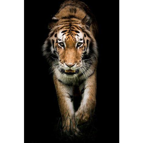 Tableau Tiger - Animaux - pour Salon, Chambre - Multicolore en Bois, coton, 60 x 120 x 3 cm