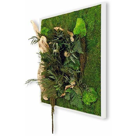 Tableau végétal nature carré XL avec plantes stabilisées