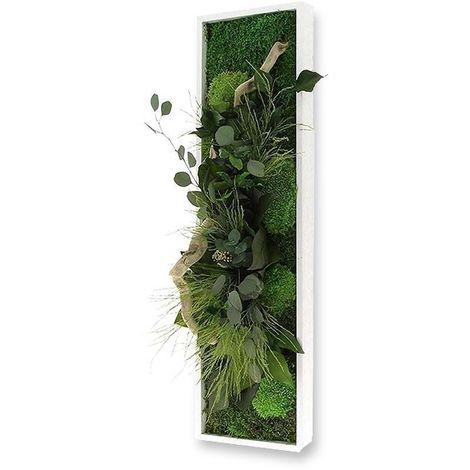 Tableau végétal nature Panoramic avec plantes stabilisées