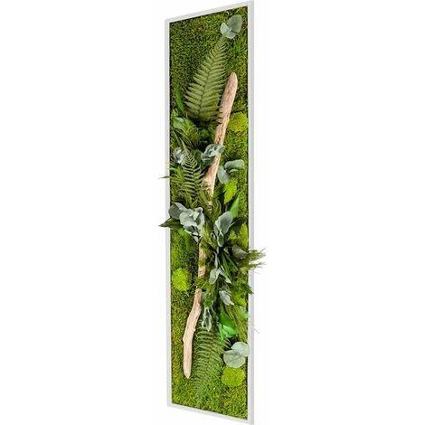 Tableau Végétal Nature XL Avec Plantes Stabilisées