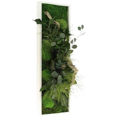 Tableau Végétal Stabilisé PANORAMIQUE 20x70   FLOWERBOX Verifier Le Produit  à La Livraison