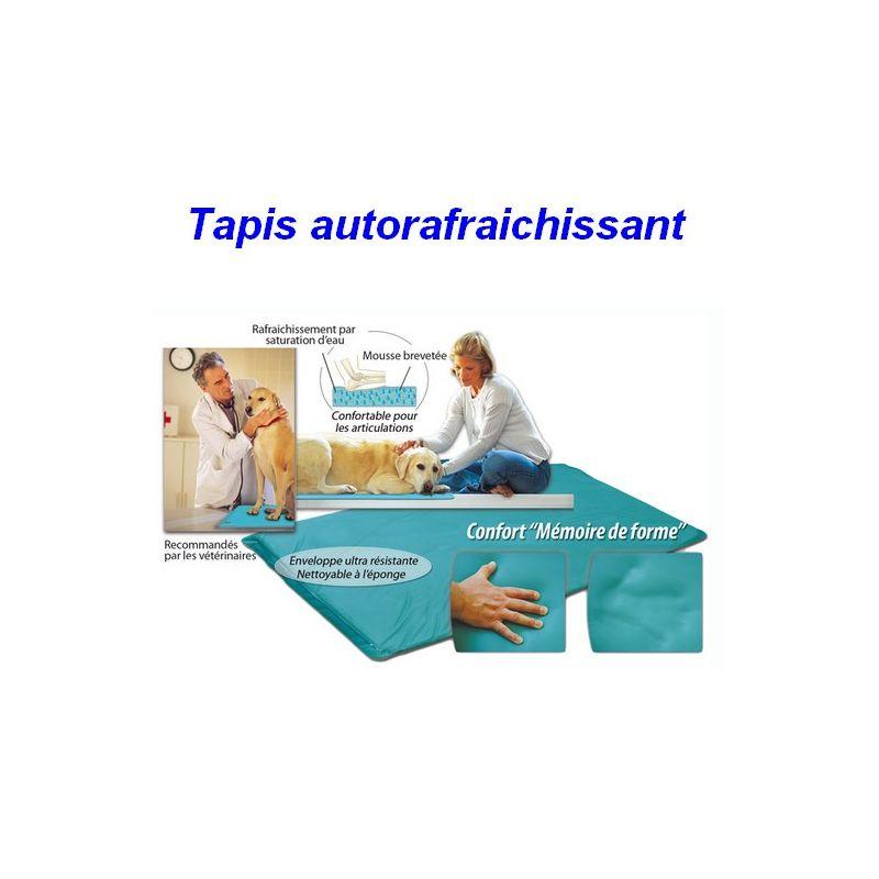 Morin - Tapis auto rafraichissant pour chien Désignation : Tapis fraicheur | Taille : M - 80 x 55 cm 625901