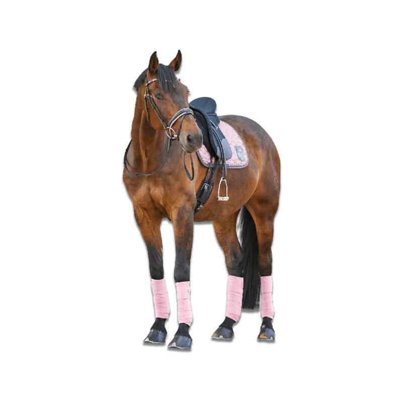 gris ardoise Caldene Mortham femmes complet siège équitation toutes tailles super qualité