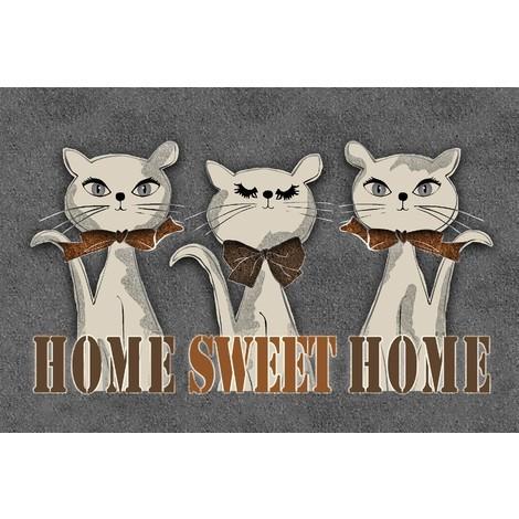 Tapis d'intérieur anti-poussière Home Sweet Home 40x60cm