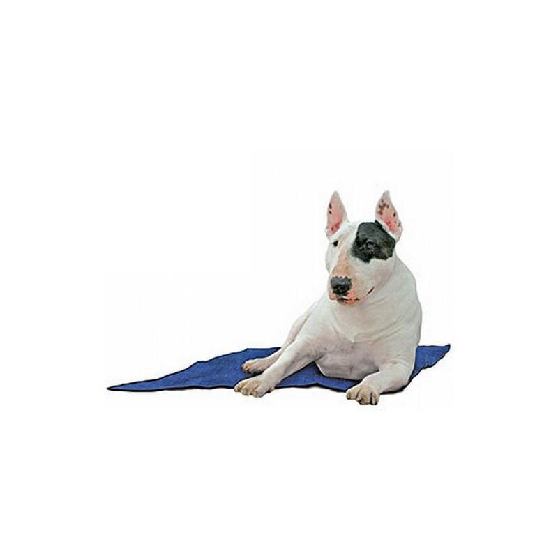 Tapis rafraîchissant pour chien Désignation : Tapis rafraichissant | Taille : 100 x 90 cm Fresh Mat 410323