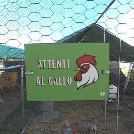 Targhetta per Pollaio Attenti al Gallo