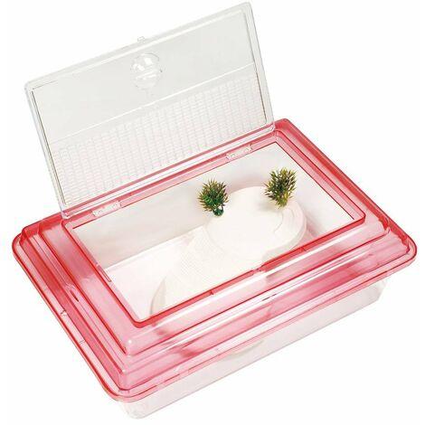 Tartarughiera rettangolare in plastica con isola e coperchio