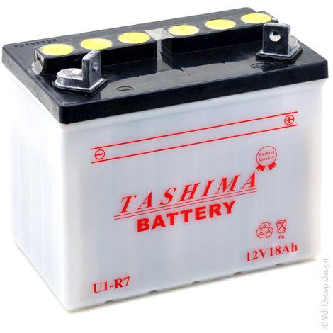 Tashima - Batería motocultor U1-R7 12V 18Ah