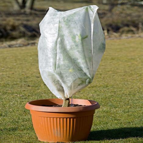 Telo Cappuccio Termoclima 30gr TNT antigelo piante albero tessuto d 1x1,6 mt bianco STI