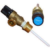 Temperature & Pressure Relief Valve 95605810