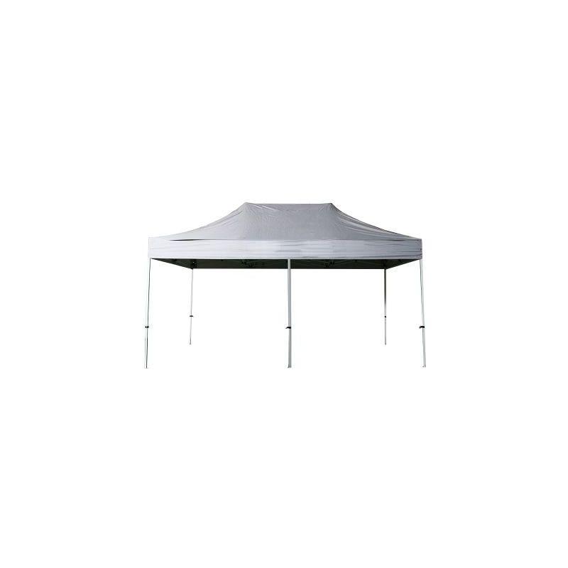 Interouge - Tente pliante 3x6m polyester 300g/m² pélliculé PVC tube acier 32mm Coloris Gris Clair - Gris Clair