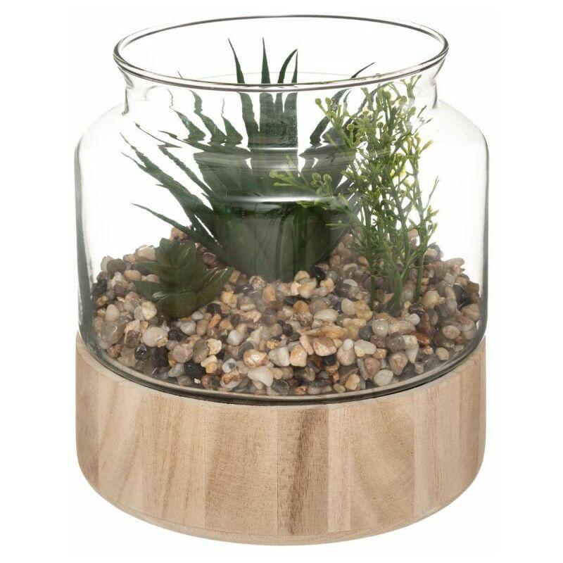 Terrarium en Verre & Bois Brito 17cm Transparent