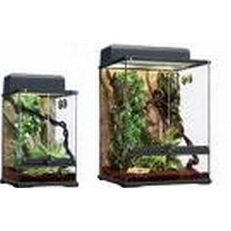 Terrarium small habitat kit rainforest cm 30x30x45