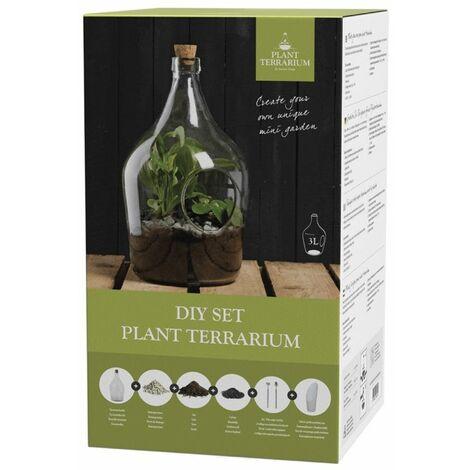 Terrarium végétal à faire soi même 3 litres