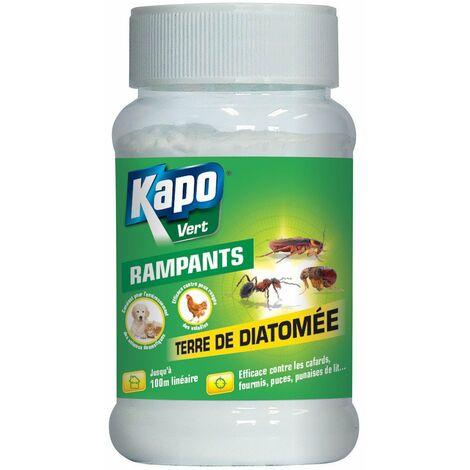 Terre de diatomée traitement insectes rampants 100
