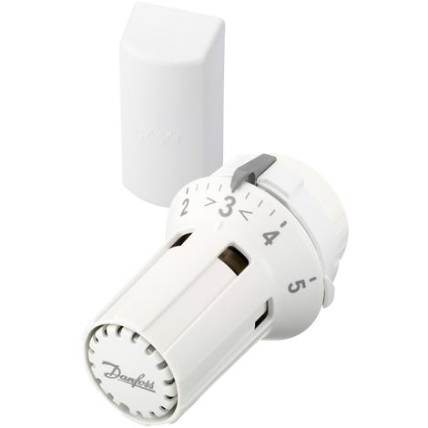 Tête thermostatique liquide RAW 5012 avec bulbe à distance - Danfoss 013G5012