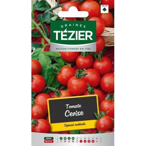 Tézier - Tomate Cerise