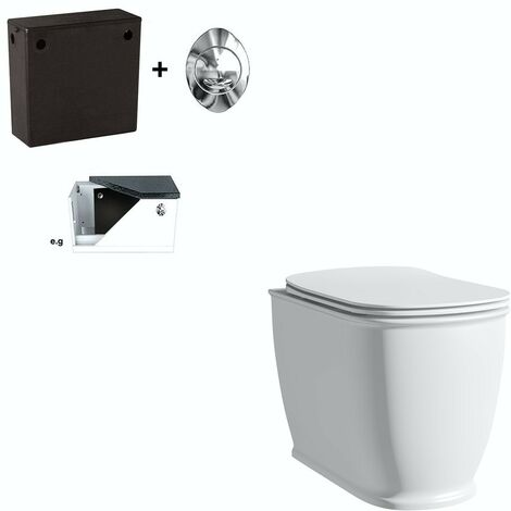 """main image of """"The Bath Co. Beaumont back to wall toilet with soft close seat"""""""