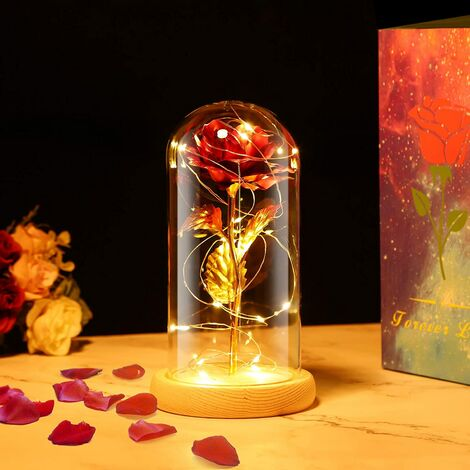 The beautiful and the pink beast, eternal pink under glass bell with lights led pine base for girl friend female mother valentine anniversary Christmas wedding home office decorations