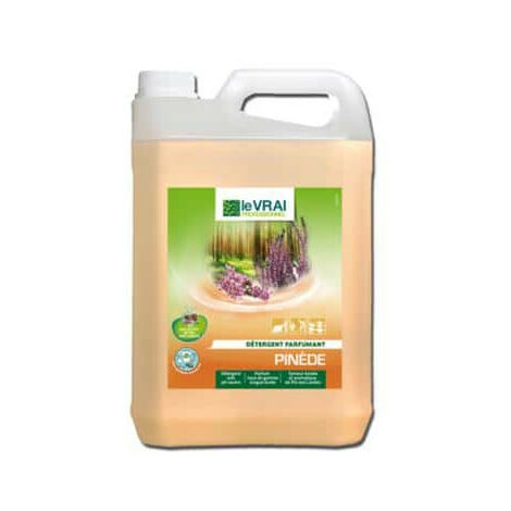 The detergent True Professional Pinewood 5L