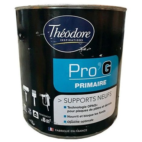 Théodore Pro'G Primaire Supports neufs - 2L