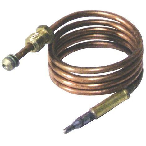 Thermocouple - EFEL : 401900400