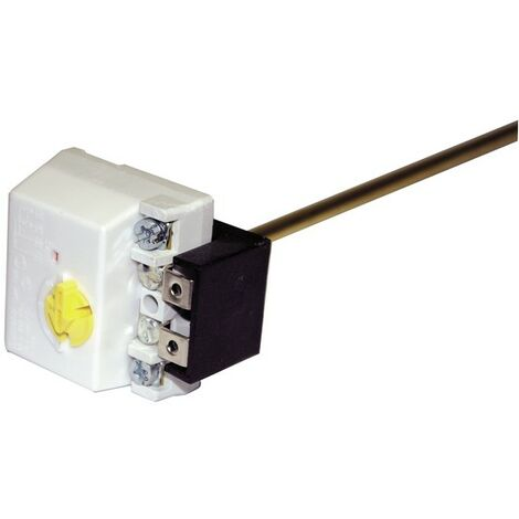 Thermostat à canne embrochable - COTHERM : TUS0014007