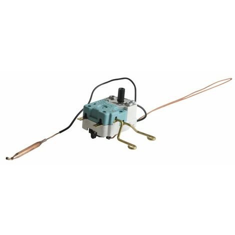 Thermostat chauffe eau BBSC 2 bulbes 100° - COTHERM : BBSC007607