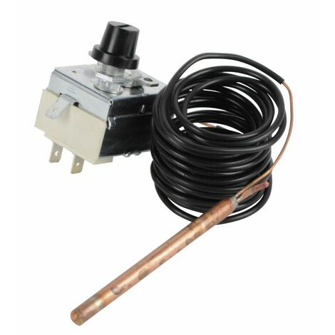 Thermostat TG400 capillaire 2M DIFF DIFF pour Chapp/ée S17006955