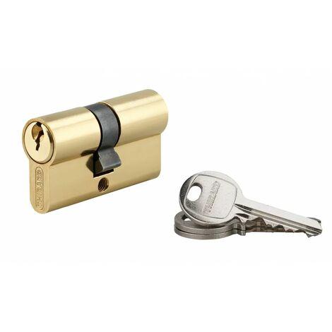THIRARD - Cylindre 25 x 30 mm laitonné 3 clés