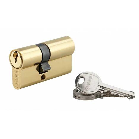 THIRARD - Cylindre 25 x 35 mm laitonné 3 clés