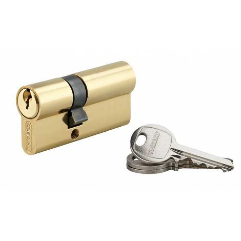 THIRARD - Cylindre 25 x 40 mm laitonné 3 clés