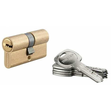 THIRARD - Cylindre de serrure à double entrée Tiger 6, 30x30mm, laiton, anti-arrachement, anti-perçage, 5 clés