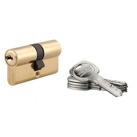 THIRARD - Cylindre de serrure double entrée Trafic 6, 30x30mm, anti-arrachement, anti-perçage, laiton, 5 clés
