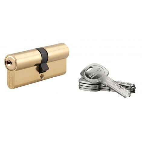 THIRARD - Cylindre de serrure double entrée Trafic 6, 40x40mm, anti-arrachement, anti-perçage, laiton, 5 clés