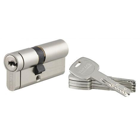 THIRARD - Cylindre de serrure double entrée Transit 2, 40x30mm, nickel, anti-arrachement / perçage / casse côté 30mm, 3 clés