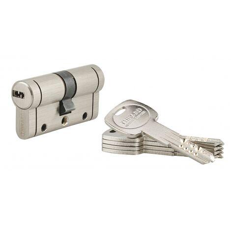 THIRARD - Cylindre de serrure Trafic 12, 30x30mm, nickel, anti-arrachement, anti-perçage, anti-casse, 5 clés