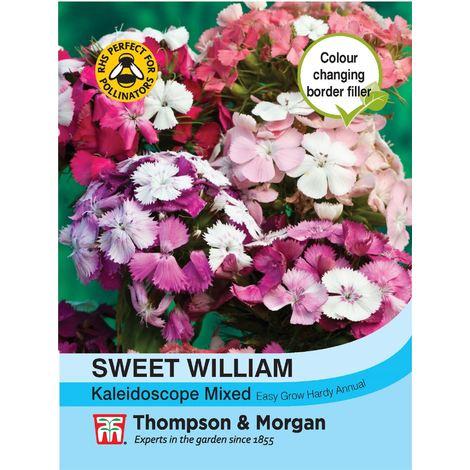 Thompson & Morgan - Flowers - Sweet William Kaleidoscope Mixed - 40 Seed