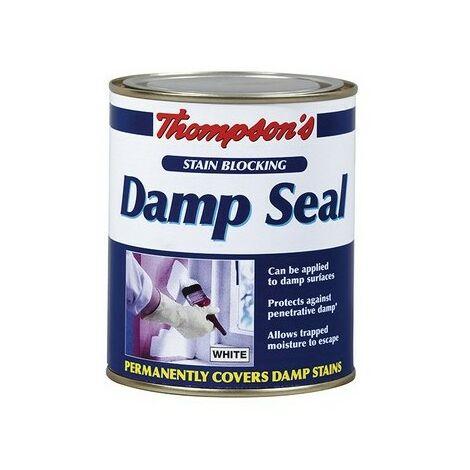 Thompsons Damp Seal