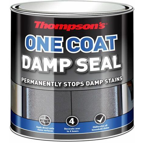 """main image of """"One Coat Damp Seal"""""""