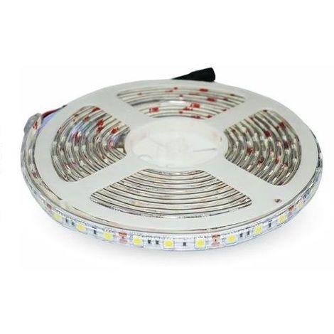 Tira LED 12V DC SMD5050 60LED luz calida 5 M 14.4W