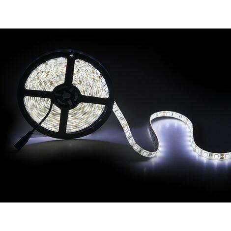 Tira LED 300 X SMD5050 12VDC IP65 x 5M | Rojo (PL219010)