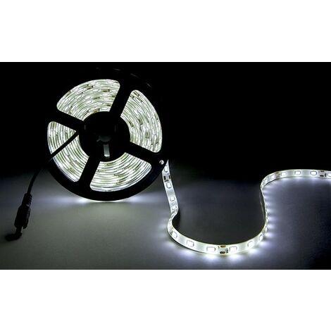 Tira LED 300 X SMD5630 12VDC CA-PL219010-CW x 5M
